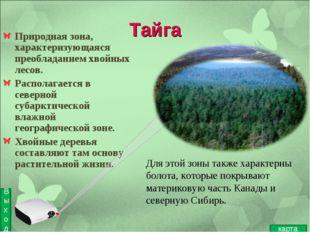 Тайга Природная зона, характеризующаяся преобладанием хвойных лесов. Располаг