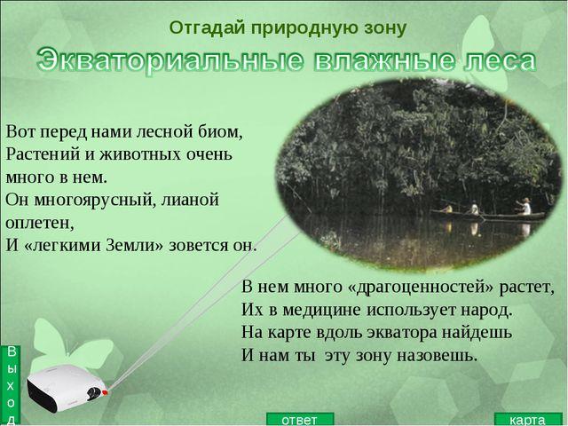 Вот перед нами лесной биом, Растений и животных очень много в нем. Он многояр...