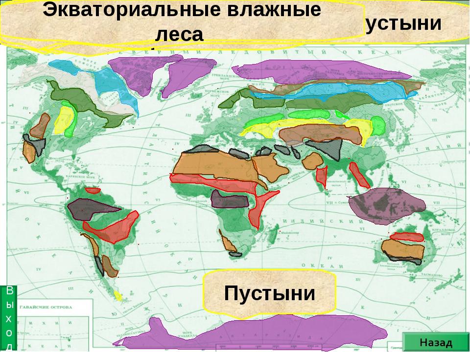 Лесостепь Саванна Степь Тропические пустыни Субтропические пустыни Пустыни ум...