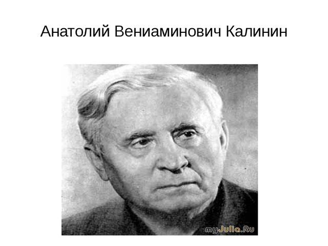 Анатолий Вениаминович Калинин