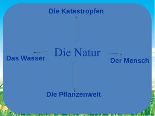 Die Natur Das Wasser Der Mensch Die Pflanzenwelt Die Katastropfen FokinaLida.