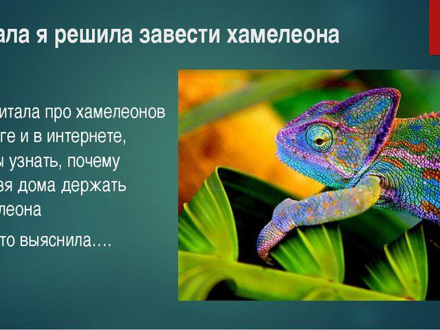 Сначала я решила завести хамелеона Прочитала про хамелеонов в книге и в интер...