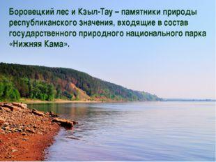 Боровецкий лес и Кзыл-Тау – памятники природы республиканского значения, вход