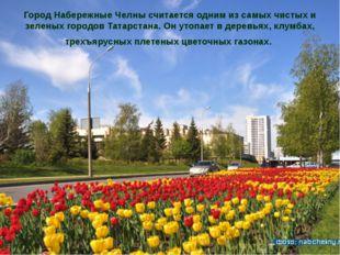 Город Набережные Челны считается одним из самых чистых и зеленых городов Тата