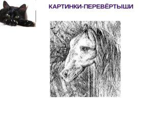 КАРТИНКИ-ПЕРЕВЁРТЫШИ