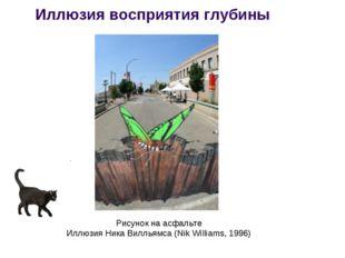 Иллюзия восприятия глубины Рисунок на асфальте Иллюзия Ника Вилльямса (Nik Wi