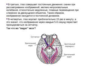 В-третьих, глаз совершает постоянные движения: скачки при рассматривании изоб