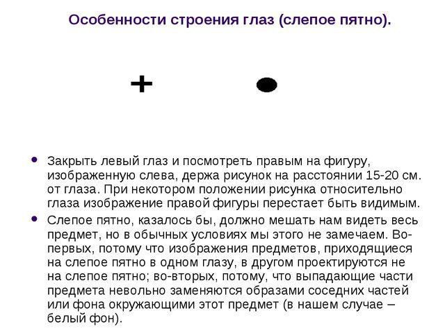 Особенности строения глаз (слепое пятно). Закрыть левый глаз и посмотреть пра...