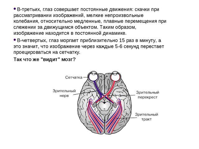 В-третьих, глаз совершает постоянные движения: скачки при рассматривании изоб...