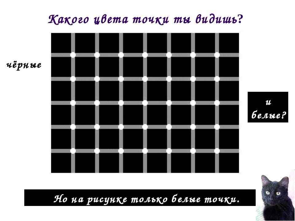 Но на рисунке только белые точки. Какого цвета точки ты видишь? чёрные и белые?