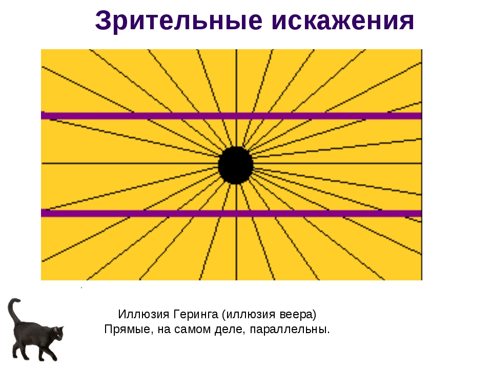 Иллюзия Геринга (иллюзия веера) Прямые, на самом деле, параллельны. Зрительны...