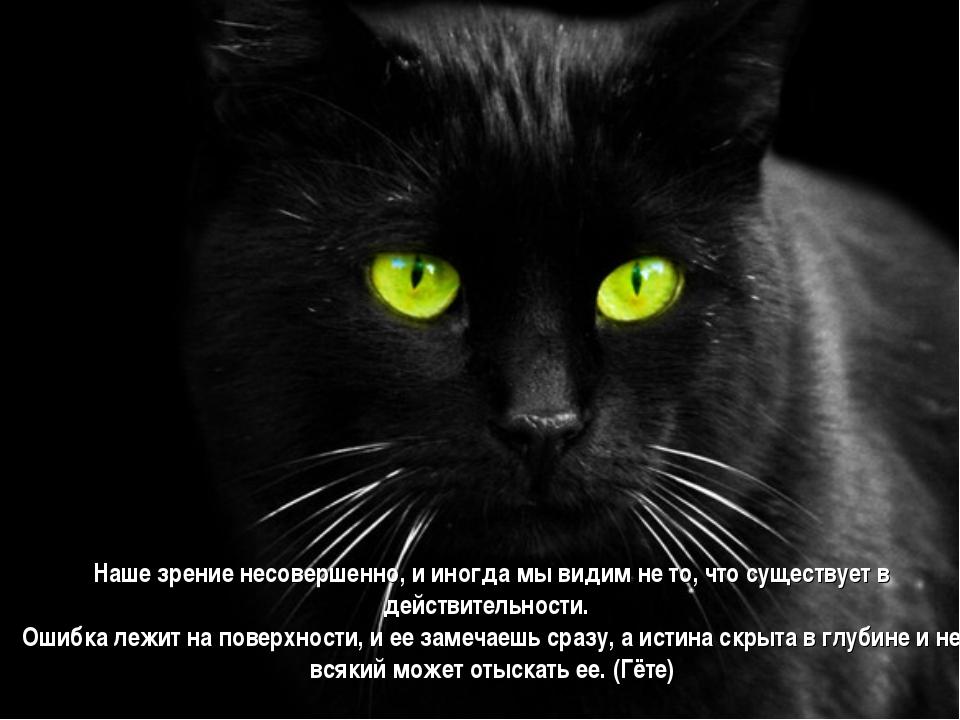 Наше зрение несовершенно, и иногда мы видим не то, что существует в действите...