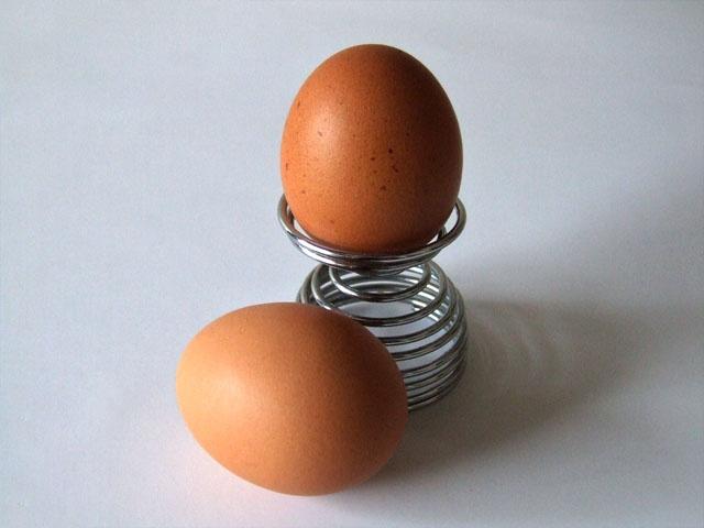 C:\Eggs-5486.JPG