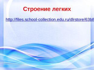 Строение легких http://files.school-collection.edu.ru/dlrstore/63b8594c-2467-