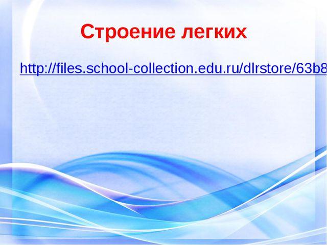 Строение легких http://files.school-collection.edu.ru/dlrstore/63b8594c-2467-...