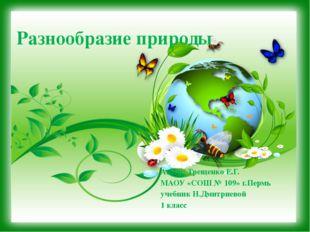 Разнообразие природы Автор: Трещенко Е.Г. МАОУ «СОШ № 109» г.Пермь учебник Н.