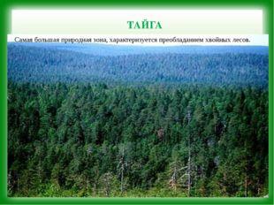 ТАЙГА Самая большая природная зона, характеризуется преобладанием хвойных ле