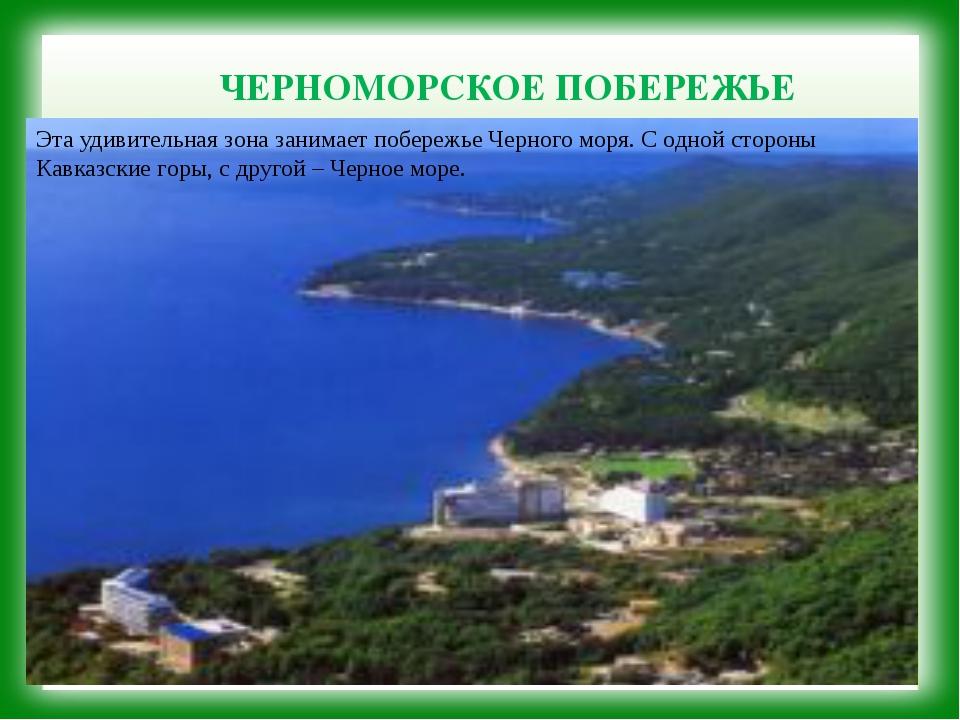 ЧЕРНОМОРСКОЕ ПОБЕРЕЖЬЕ Эта удивительная зона занимает побережье Черного моря...