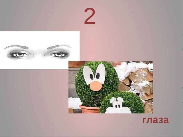 2 глаза