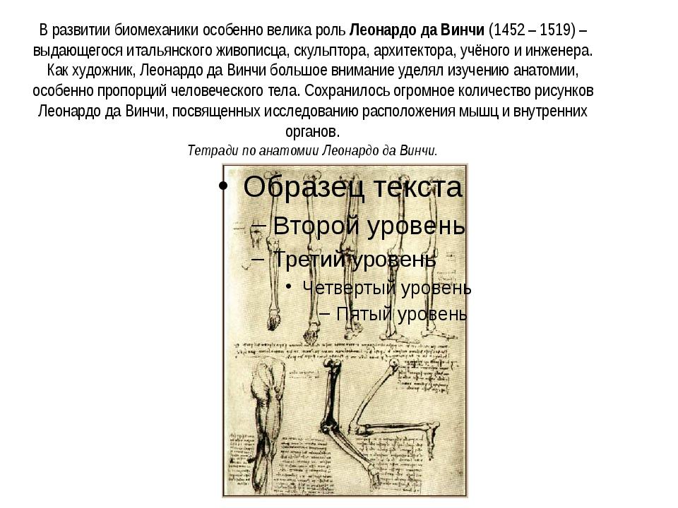 В развитии биомеханики особенно велика рольЛеонардо да Винчи(1452 – 1519) –...