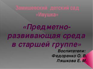 Замишевский детский сад «Ивушка» «Предметно-развивающая среда в старшей групп