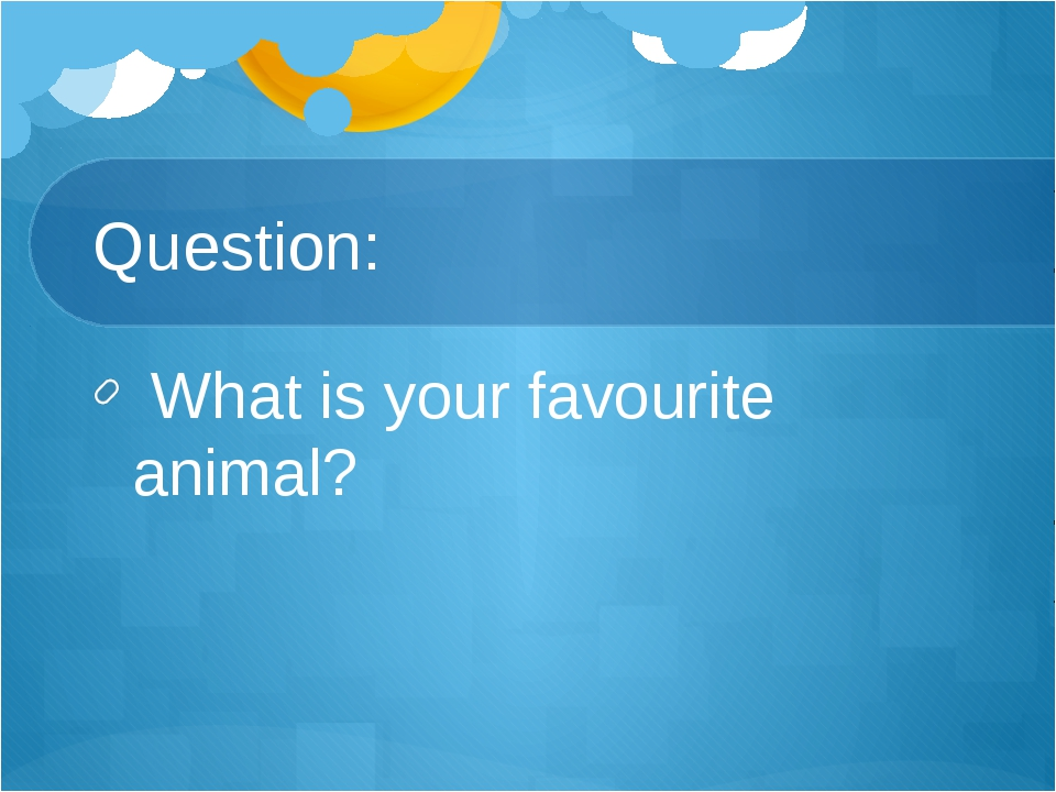 Question: What is your favourite animal?