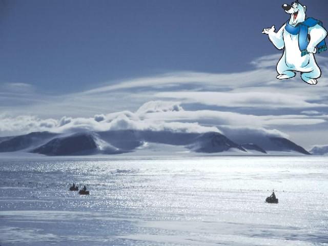 Арктическая пустыня. . Арктическая пустыня