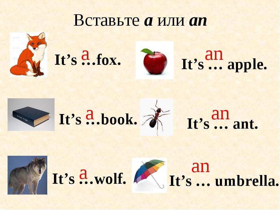 Вставьте a или an It's …book. It's … ant. It's …fox. a a an an It's …wolf. a...