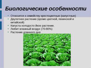 Биологические особенности Относится к семейству крестоцветные (капустные) Дву