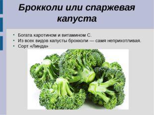 Брокколи или спаржевая капуста Богата каротином и витамином C. Из всех видов
