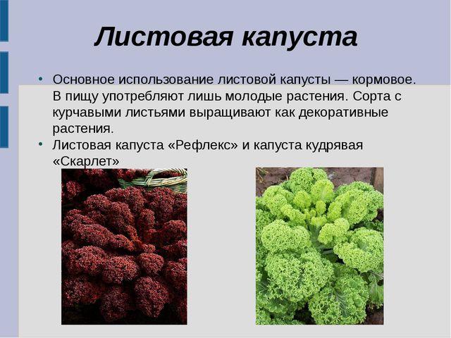 Листовая капуста Основное использование листовой капусты — кормовое. В пищу у...