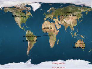 Евразия 54,9 млн.кв.км Африка 30,3 млн.кв.км Северная Америка 24,2млн.кв км Ю