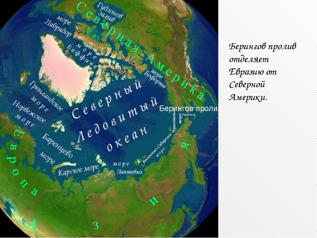 Берингов пролив отделяет Евразию от Северной Америки. Берингов пролив