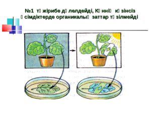 №1 тәжірибе дәлелдейді, Күннің көзінсіз өсімдіктерде органикалық заттар түзі