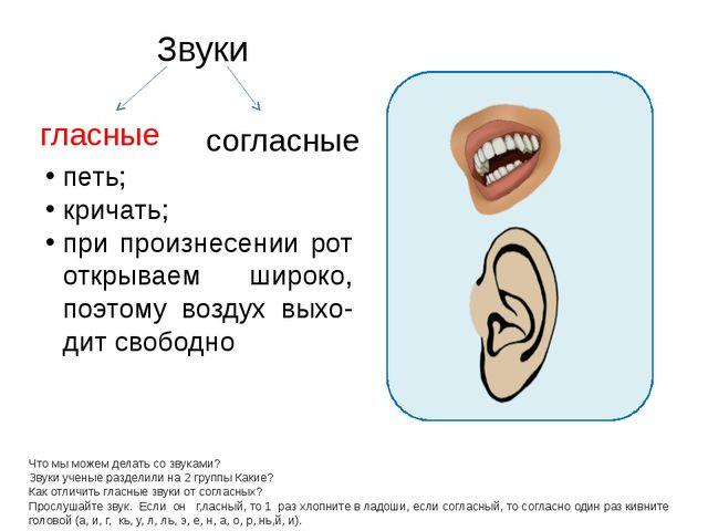 Звуки Что мы можем делать со звуками? Звуки ученые разделили на 2 группы Как...