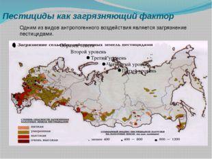 Пестициды как загрязняющий фактор Одним из видов антропогенного воздействия