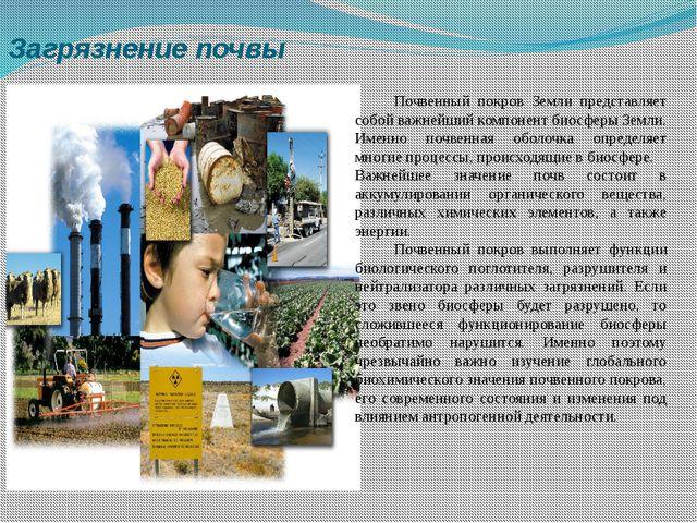 Загрязнение почвы Почвенный покров Земли представляет собой важнейший компон...