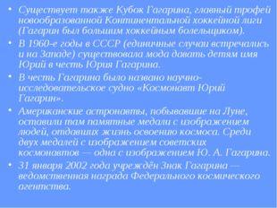 Существует также Кубок Гагарина, главный трофей новообразованной Континенталь