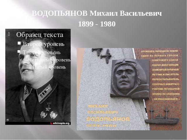 ВОДОПЬЯНОВ Михаил Васильевич 1899 - 1980