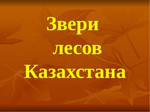 Звери лесов Казахстана