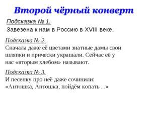 Подсказка № 1. Завезена к нам в Россию в XVIII веке. Подсказка № 2. Сначала д