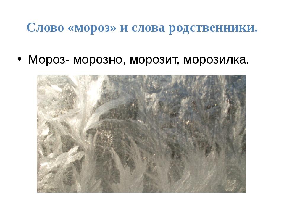 Слово «мороз» и слова родственники. Мороз- морозно, морозит, морозилка.
