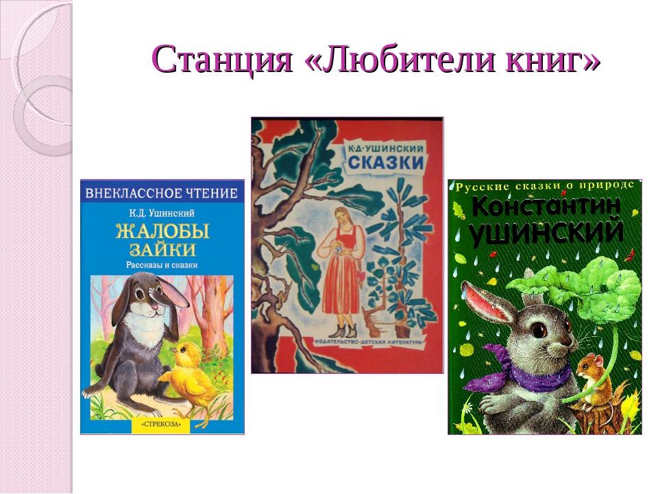 Станция «Любители книг»