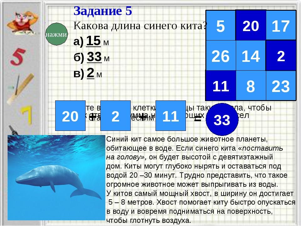Задание 5 Какова длина синего кита? а) 15 м б) 33 м в) 2 м Запишите в пустые...