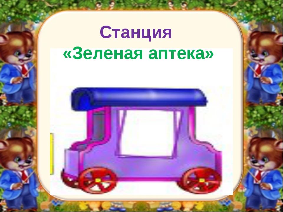 Станция «Зеленая аптека»