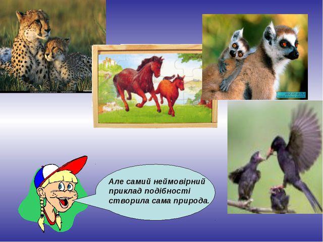 Але самий неймовірний приклад подібності створила сама природа.