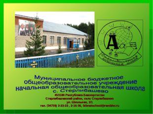 453180 Республика Башкортостан Стерлибашевский район, село Стерлибашево ул. Ш
