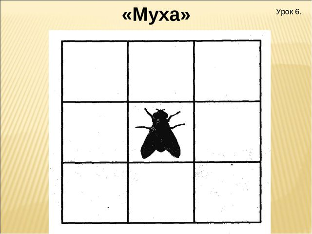Урок 6. «Муха»