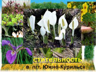 растительность в пгт. Южно-Курильск