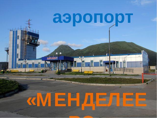 аэропорт «МЕНДЕЛЕЕВО»